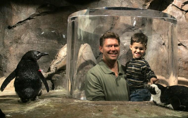 Man holds son at African Penguins exhibit at new Georgia aquarium in Atlanta