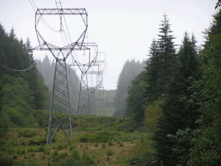 Power lines like this one could become part of an expanded network covering thousands of miles and 11 Western states.