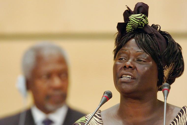 Wangari Maathai, Kofi Anan