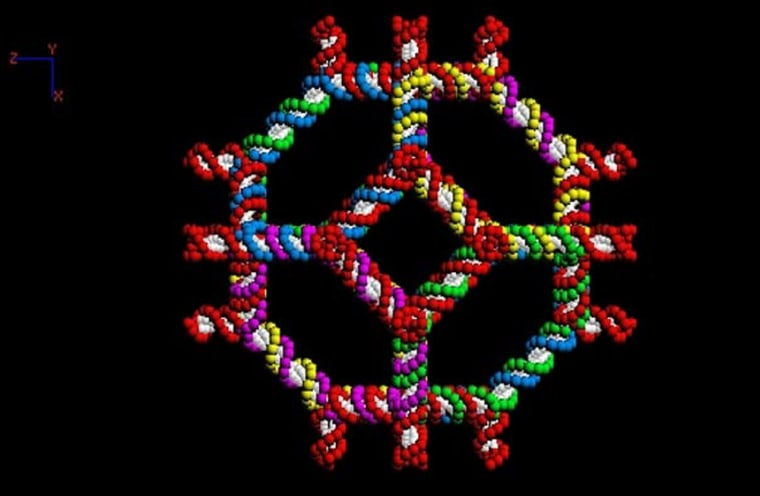 Seeman and company designed this truncated octahedron from a kit of DNA stick figures.