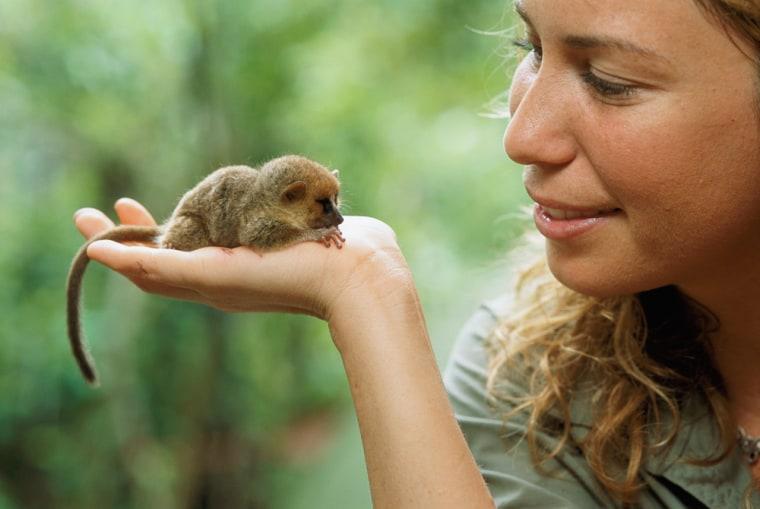 Mireya Mayor with a mouse lemur.