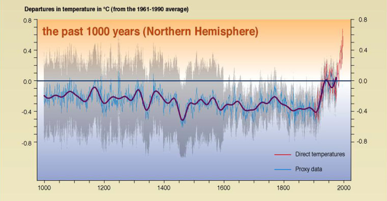 """This graphic, published in 2001 by the U.N.-backed Intergovernmental Panel on Climate Change, has been dubbed the """"hockey stick"""" chart due to its shape."""