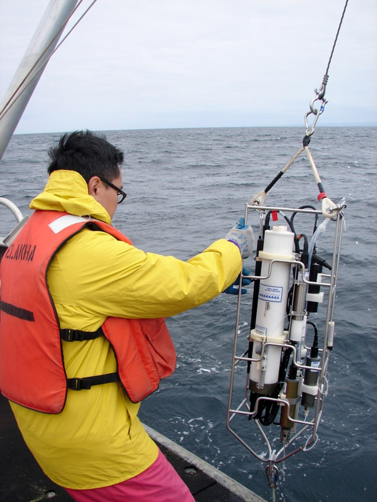 "Research into the ""dead zone"" off Oregon include taking samples of oxygen levels in the water. Frances Chan, an Oregon State University marine ecologist, pulls up a sample onto a research vessel last month."
