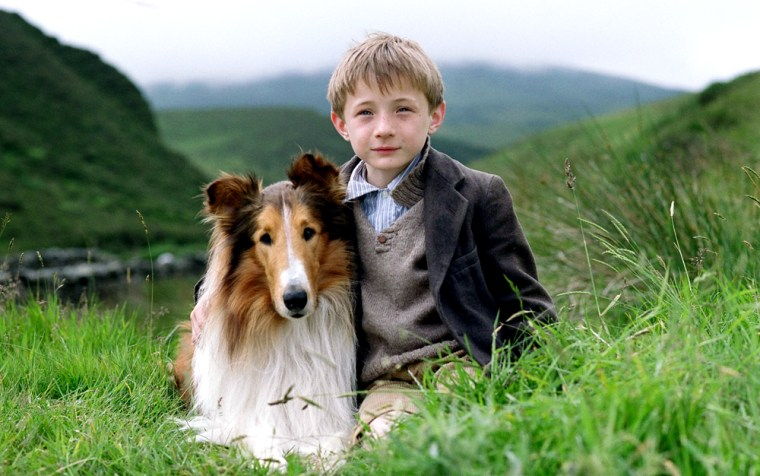 Lassie' makes a welcome return to movies