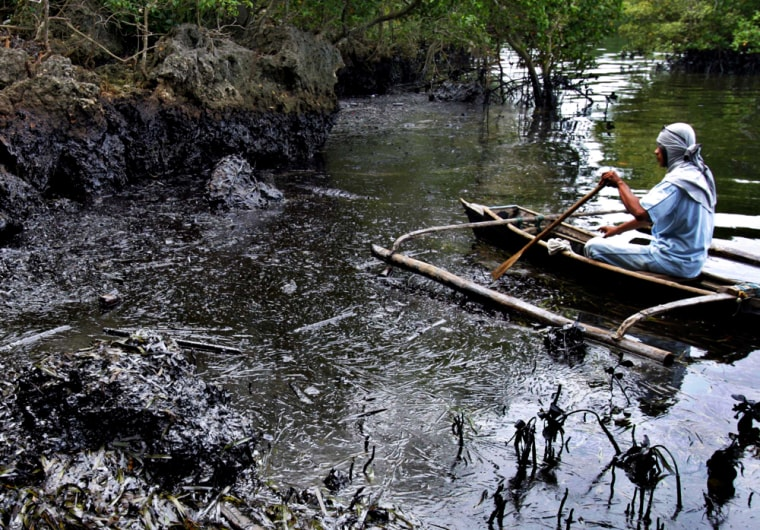 A fisherman views some ofthe damage from the oil spill in central Philippines.