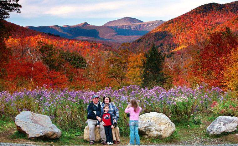 Crawford Notch State Park in New Hampshire boasts brilliant fall foliage. The radiant red hues, which come from anthocyanins, are a bit of a mystery to scientists.