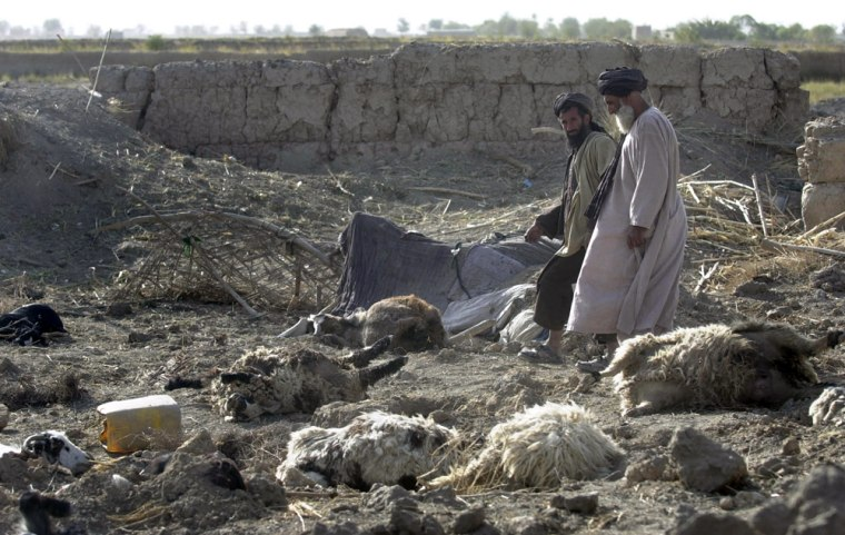 Villagers on Thursday walk next tolivestock killed during a NATO warplane attack earlier this weekin the Panjwayi district of Kandahar Province, south Afghanistan.
