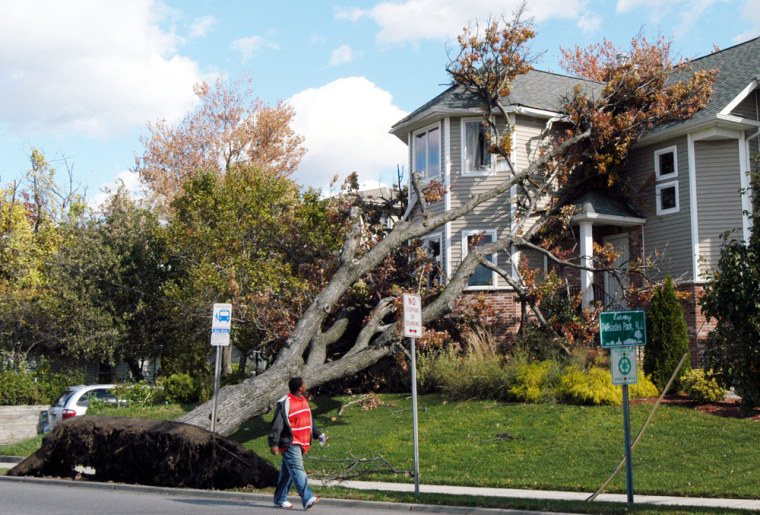 A tree uprooted by high winds rests against a new home in Palisades Park, N.J., on Sunday. High winds continued to batter New Jersey and other eastern U.S. locationsfor the third day in a row.
