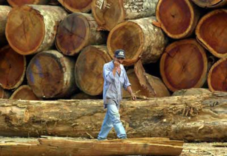 Loggers face the second most dangerous workplace in the United States.