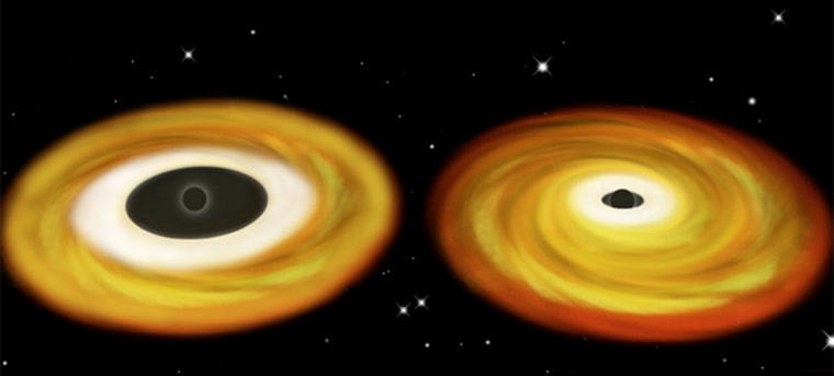This illustration shows swirling disks of accreting gas orbiting two types of black holes, with the bulk of the X-rays pouring out of the inner region of each disk. Inside the disk, the gas suddenly plunges into the hole with no time to radiate away its energy. For the non-spinning black hole shown at left, this inner radius is large. But for the fast-spinning black hole shown at right, the gas can orbit very near the event horizon.