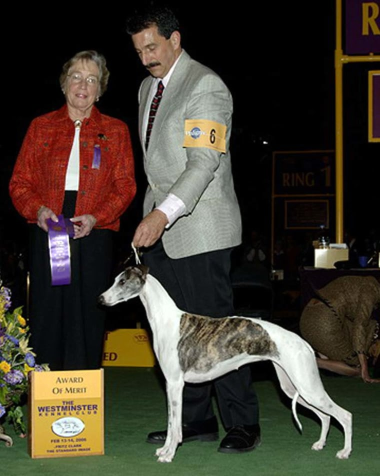 Westminster Kennel Club judge Dorothy Hutchinson, left, and part-owner Paul Lepiane pose for a photo with 3-year-old whippet Champion Bohem C'est La Vie, who answers to Vivi, on Feb. 14. The dog escaped the next day from her travel cage at Kennedy Airport.