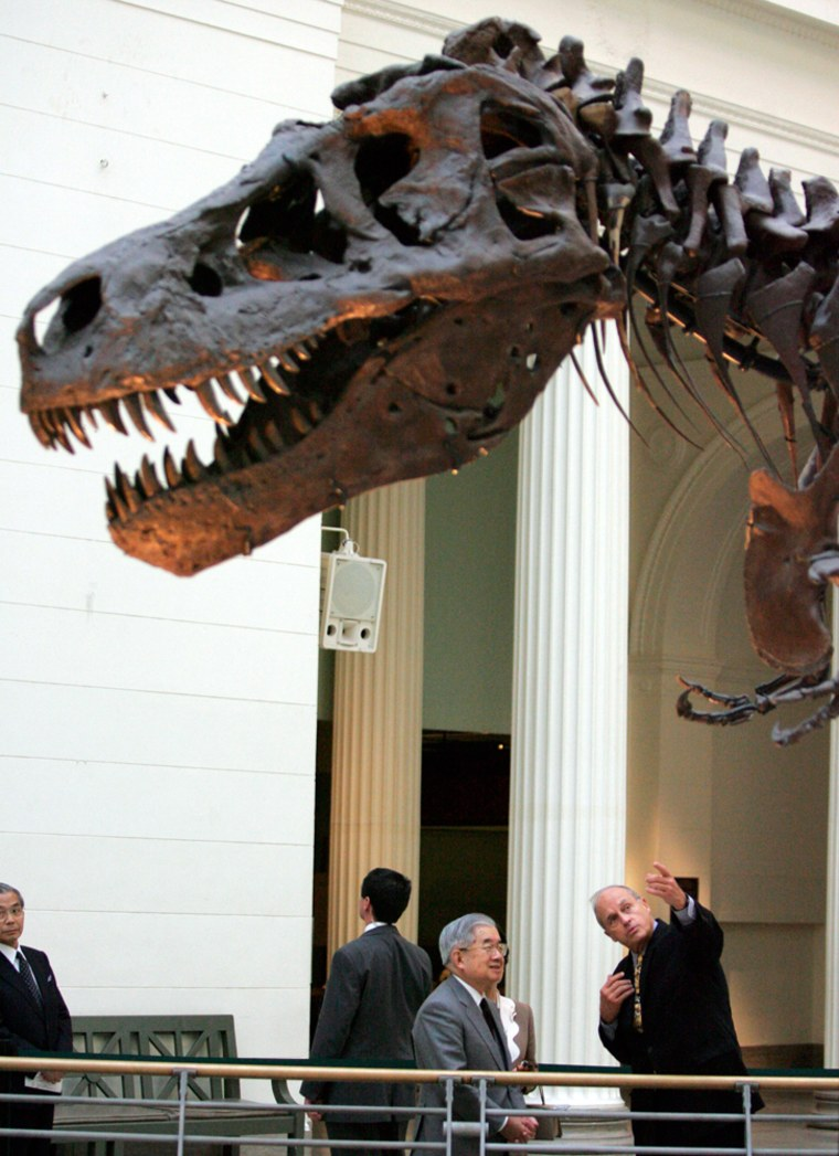 Sue, the T-Rex, is one of Chicago's Field Museum's most popular pieces. A sponsorship of the dinosaur skull will cost sponsors $1 million.
