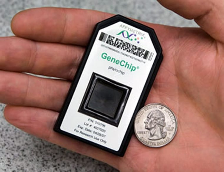 PhyloChip boasts a lot of analytical power in a small package.A DNA micro-array,it probesair samples for a gene involved in producing a protein that is found in all bacteria.