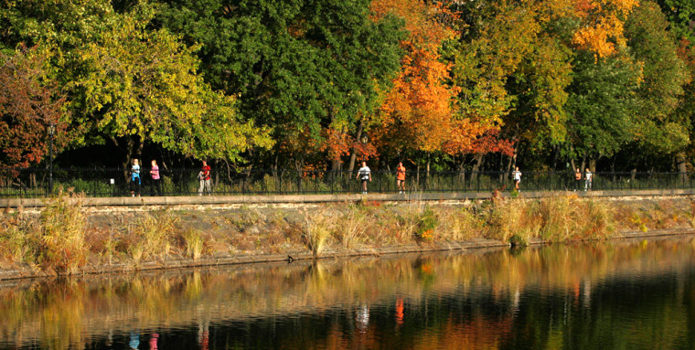 A warm start to winter, like this scene in New York City's Central Park on Nov. 1 when temperatures were in the 60s, meant a 2006 for the record books.
