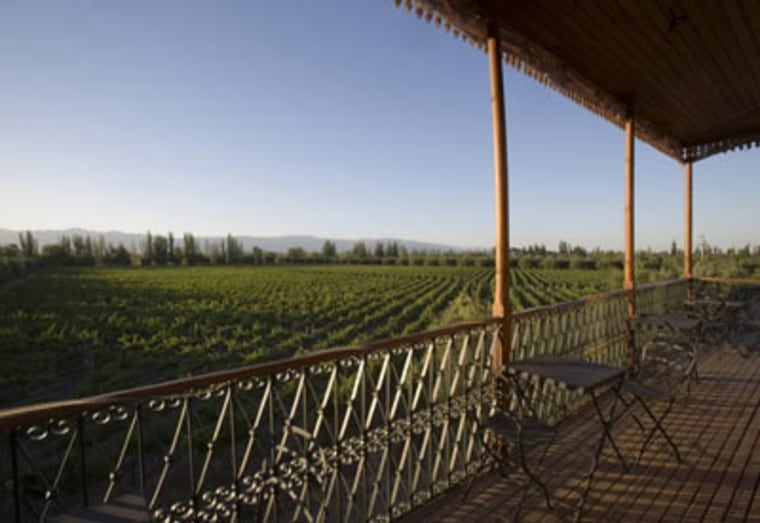 Mendoza, the capital of Argentina's main wine-producing region, boasts tree-lined streets and large central plazas. The best reason to visit is the annual Vendimia, the wine harvest festival that culminates there each spring and features folk festivals, a blessing of the grapes and wine tastings.