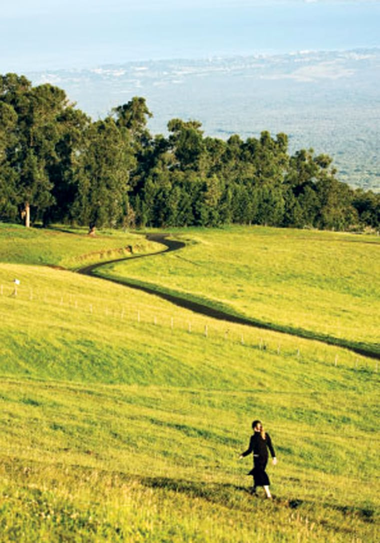 Upcountry Maui wraps around the slopes of Haleakala in a fertile ring of farms and ranches.