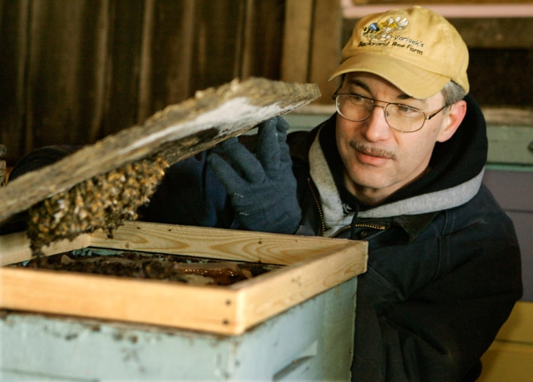 Beekeeper Charlie Vorisek looks at one of his beehives at his home in Linesville, Pa.A mystery ailment has killed off thousands of bees across the country in recent months.