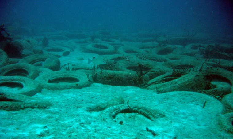 These tires are among the up to 2 million dropped off Fort Lauderdale in 1972 in a failed bid to create an artificial reef.