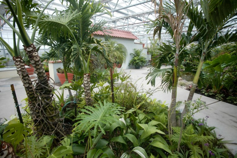 The Roger Williams Park Botanical Center, which houses an extraordinary array of flowers, rare plants, waterfalls and unique exhibits, including carnivorous plants and towering palm trees, was officially opened to the public on March 2.