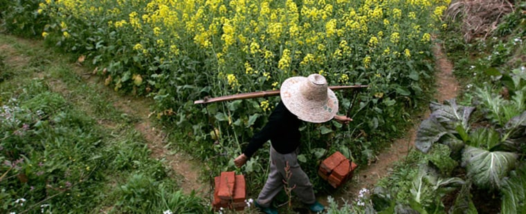 Farmer walks past farm in Wuyuan