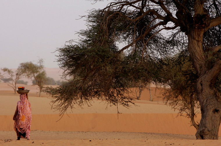 ** ADVANCE FOR SUNDAY, APRIL 1 ** A Mauritanian nomad woman walks past a tree in the desert, on the outskirts of Chinguetti, Mauritania, Tuesday, March 13, 2007. Research shows a host of trees retreating from the arid region south of the Sahara Desert known as the Sahel over recent decades, with trees like Dimb losing ground to more arid species. (AP Photo/Schalk van Zuydam)