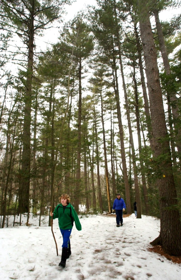 Hikers Joey Ferreli, 11, front, and his father, Jody Ferrelli, both of Sudbury, Mass., make their way along a trail in Mount Misery park in Lincoln, Mass., on March 10. Though not as well known as Walden Woods, the 227-acre swath of land next to the Sudbury River was one of author Henry David Thoreau's favorite places to take his rambling hikes.