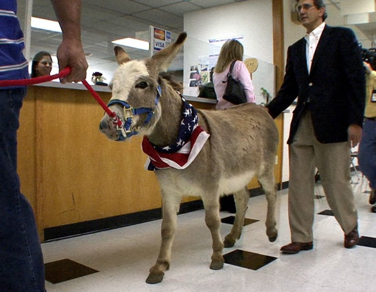 Buddy the donkey is led by ranch operator Etienne Grimmett and owner Gregory Shamoun, right, into court in Fort Worth, Texas, on Wednesday.