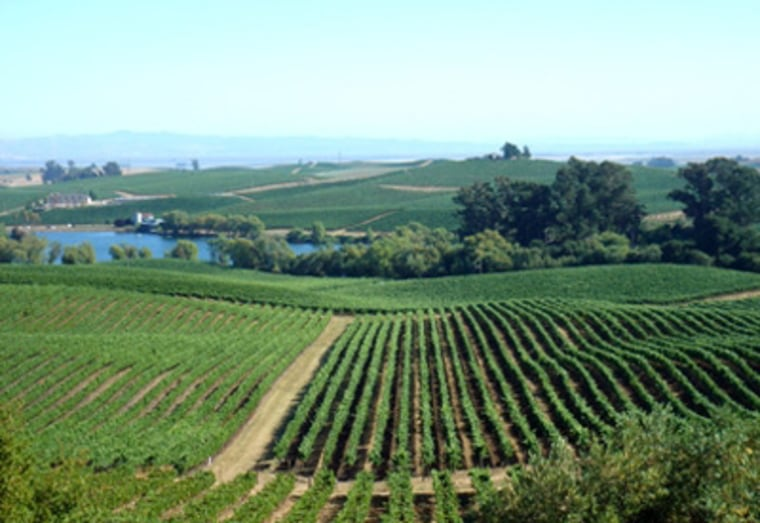 Napa and Sonoma, of course, have some of the world's best luxury accommodations, landscapes, restaurants and artisanal foods, as well as famous large-scale wineries and hand-crafted, boutique vineyards.