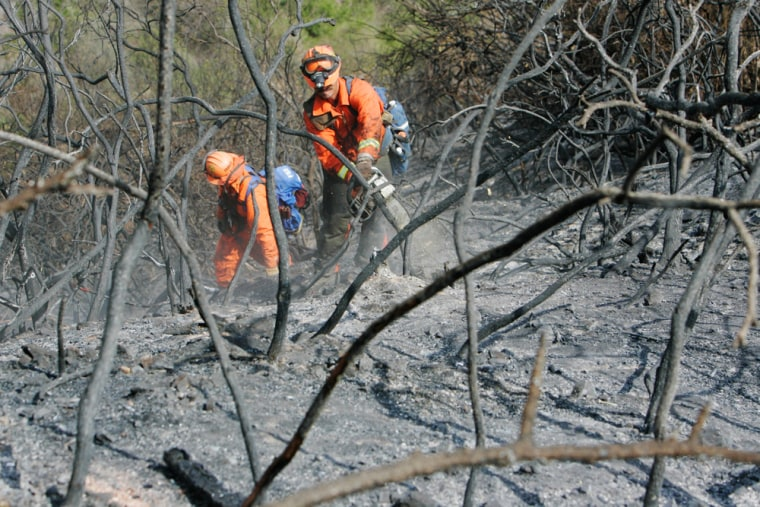 George Martinez, right, and Paul Franco, members of an inmate hand crew, clear charred brush from a burned-out hillside on Santa Catalina Island off the coast of Southern California on Saturday.