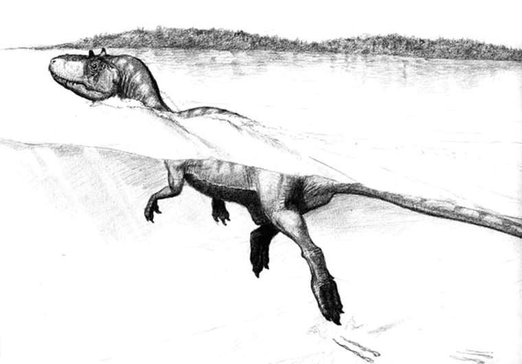 Sketch of a swimming theropod dinosaur on the shores of the Cretaceous lake Cameros in Spain.