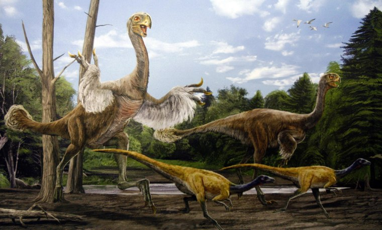 An illustration showing the size of a Gigantoraptor in Beijing