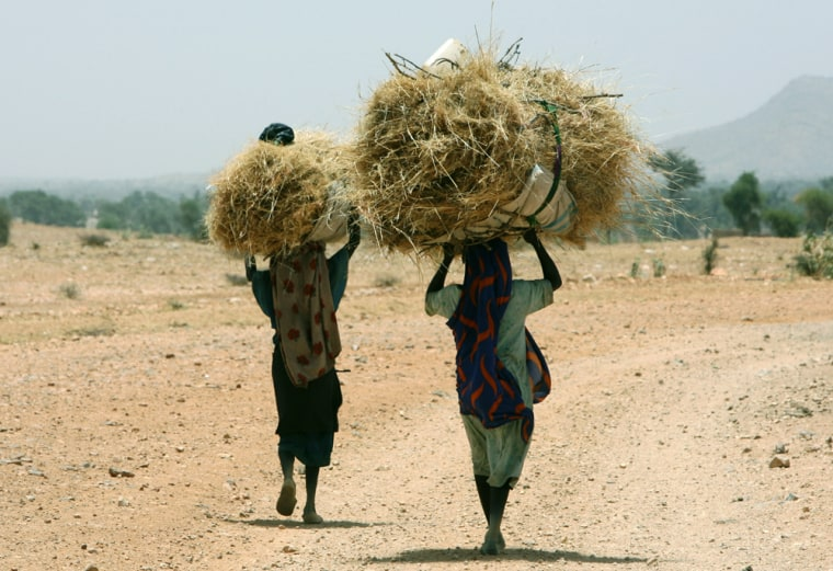 These women walking home on April 23 near Murnei, Sudan, reflect part of Darfur'senvironmentaltragedy: the destruction of forest cover for firewood.