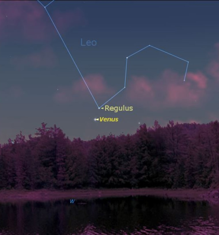 Venus and star Regulus appearin thisconfiguration at9:30 p.m. on July 13 from midnorthern latitudes. By early August, the planet will disappear from the evening stage.