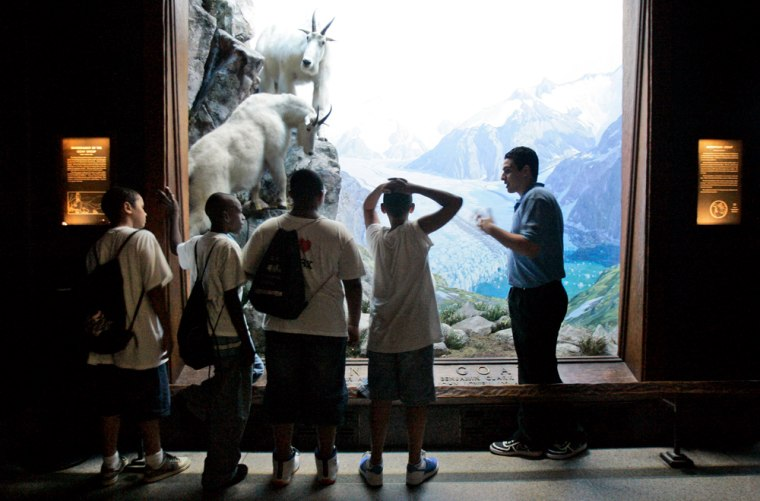 """Hassan Mohamed, 19, right, tells students fromthe P168 school in theBronxaboutmountain goats during his """"Attack and Defense"""" tour ofthe American Museum of Natural History in New York."""