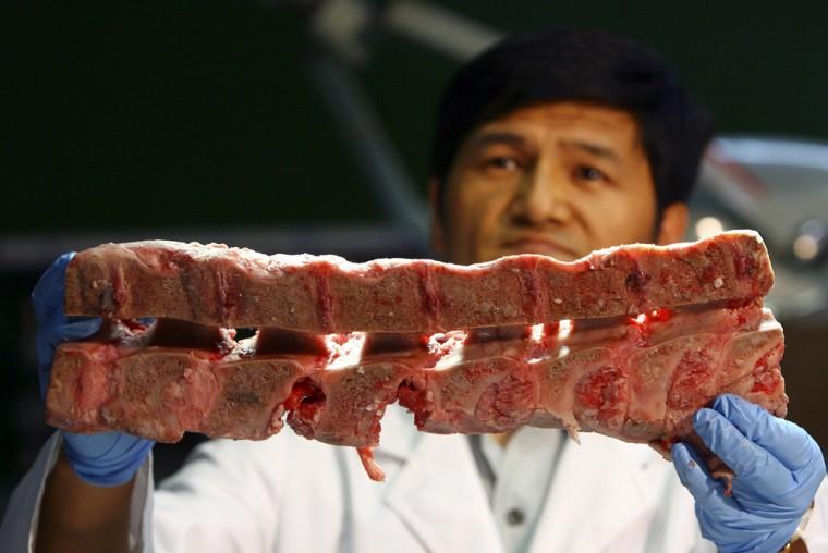 A quarantine inspector shows vertebral columns found in U.S. beef shipments in Anyang