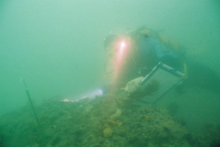 A diver above an 8,000 year old archaeological platform.