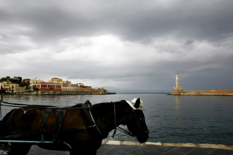 A carriage horse waits for tourists at t