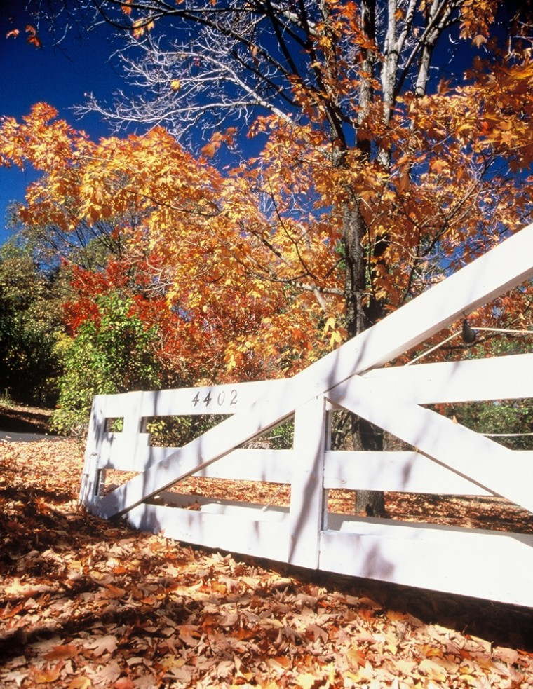 Foliage season is almost here and, once again, the prediction is fiery reds, blazing yellows and plenty of leaf-peeping traffic jams.