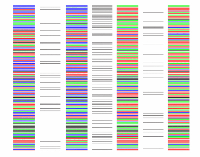 These color-coded genetic sequences serve to identify four different species, with the gray bars indicating the differences between them. From left, the sequences represent a hermit thrush, an American robin, a bumblebee and a honeybee.