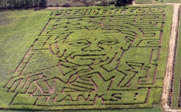 Amaze in a cornfield in the likeness of the nation's 38th president, the late Gerald R. Ford, is seen Saturday at Gull Meadow Farms near Richland, Mich.