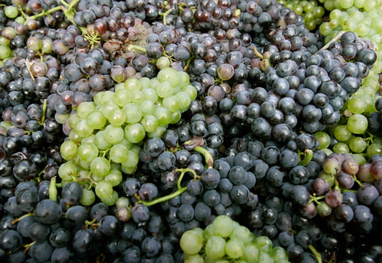 French and Italian researchers have mapped the genome of the pinot noir grape, saying that it has a DNA sequence of nearly half a billion letters.