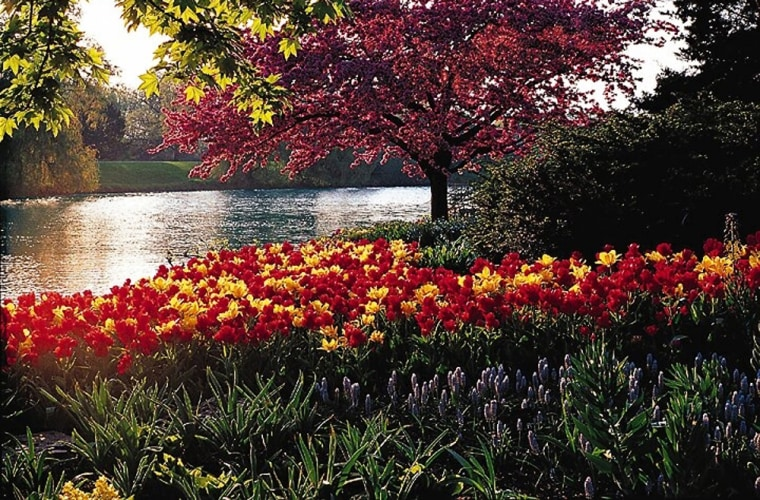 The Chicago Botanic Garden features 23 beautiful gardens and three native habitats set on 385 acres of rolling hills and tranquil lakes.