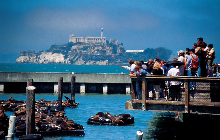 Visitors enjoy watching the sea lions at San Francisco's Pier 39 with Alcatraz in the background.