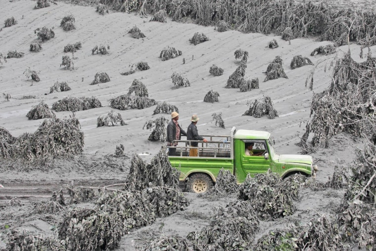 Image: Villagers ride on a truck as they inspect the damage on a coffee plantation