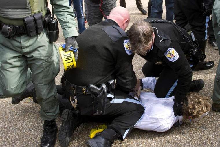 Image: US Park Police arrest a protestor during a march against corrupt governments and corporations