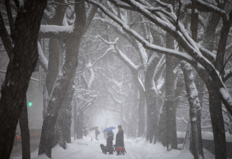 Image: People walk along 5th Avenue at Central Park as it snows in New York