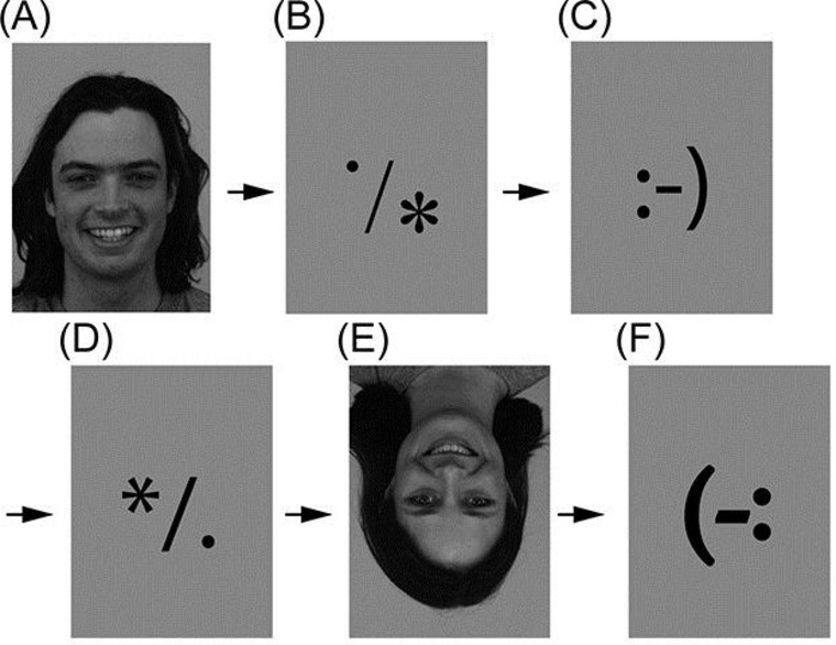 Examples of stimuli used in the experiment; subjects were shown ordinary faces, inverted faces, emoticons pointing both ways, and sets of three characters that represented nothing.