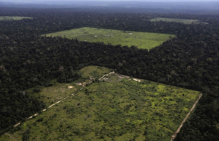 Image: File photo of an aerial view of a tract of Amazon rainforest which has been cleared near Santarem
