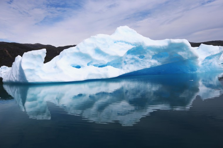Image: Calved icebergs from the nearby Twin Glaciers float on the water