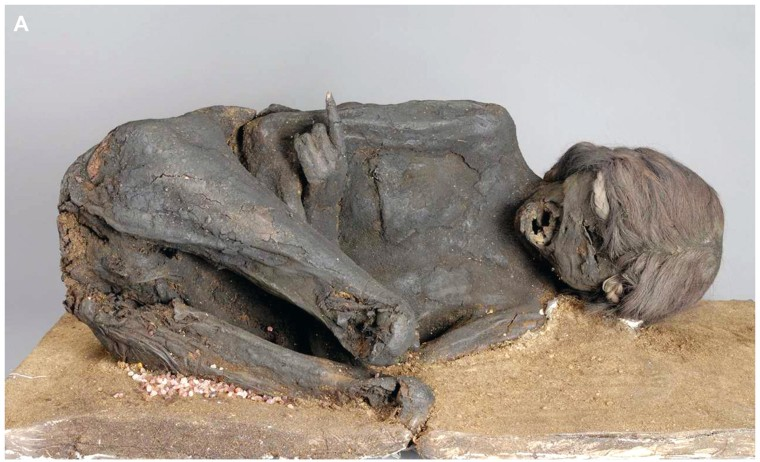 Image: Frontal view of a 500-year-old Incan mummy